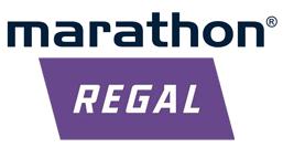 Marathon Electric Motors India